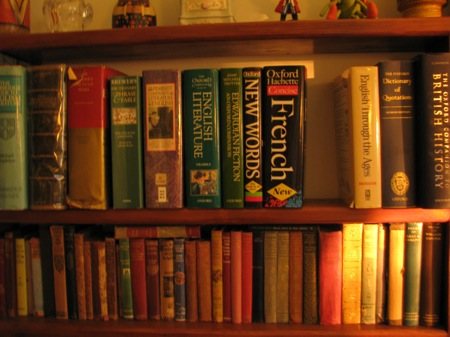 Magical Mystery Bookshelf Tour Stage Ten The Living Room Small Bookcase Edition